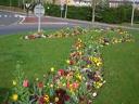 fleurissement printemps09