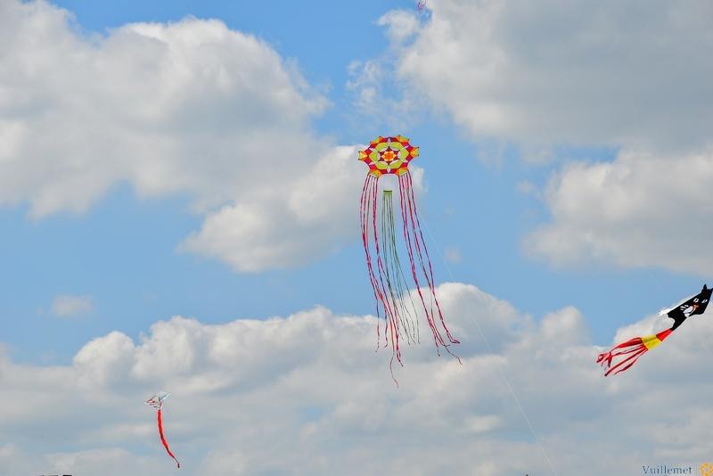 Festival de cerfs volant