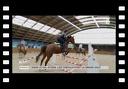 ANIMAUX : Dans le Val d'Oise, les chevaux font le grand saut