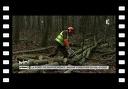 VU D'ICI : La forêt de Montmorency, massif forestier du Val d'Oise